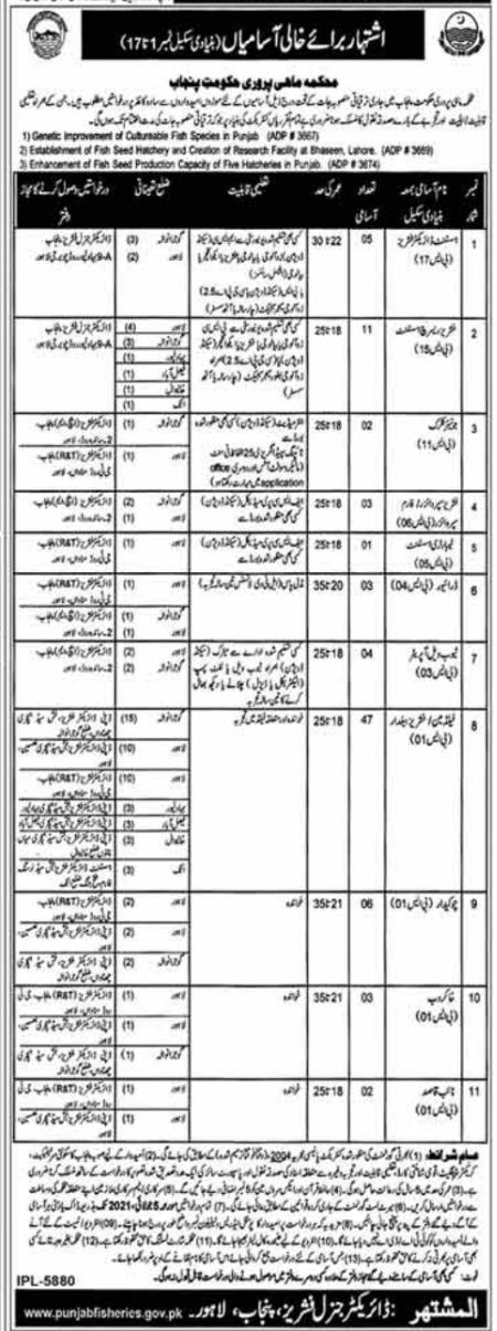 Latest Fisheries Department Punjab Jobs 2021 Advertisement