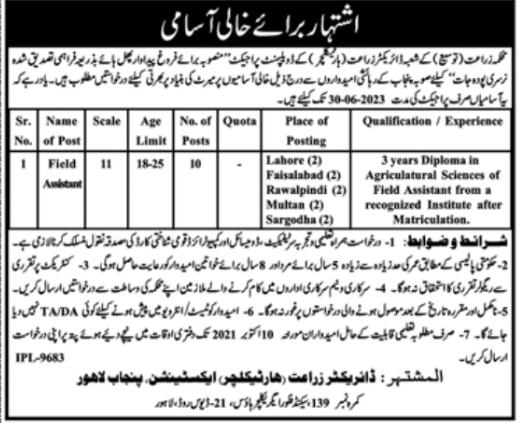 Jobs in Punjab - Field Assistant Jobs 2021 Latest
